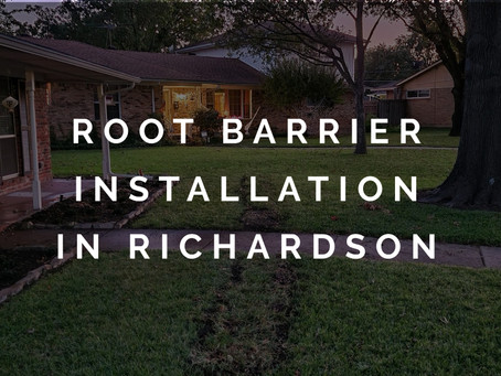 Installing a Root Barrier to Address Foundation Problems in Richardson