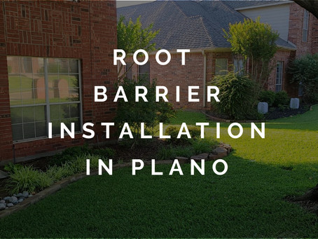 Successful Root Barrier Installation to Address Foundation Movement in Plano