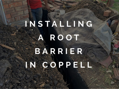 Fixing the Root of the Problem with Barriers in Coppell TX