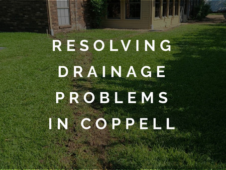 Quick, Quality Drainage Services in Coppell TX