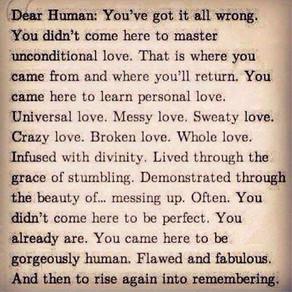 Dear Human,