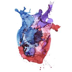 anatomical-heart-mallory-morrison.jpg