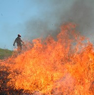 Fire and a Changing Climate
