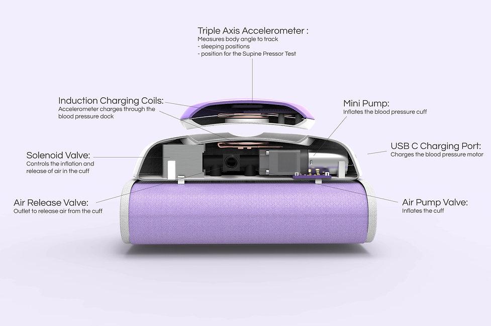 Rendering Diagram Cut purple.jpg