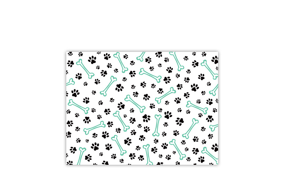שטיח לחיות מחמד עצם כלב מנטה 45/60 - עודפים