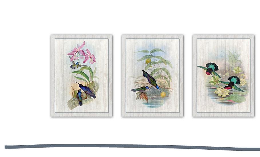 תמונת עץ שלישיית איורי ציפורים1 במגוון מידות