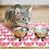 Thumbnail: Cats  - Vinyl Pet Placemat - Pink animals theme pattern