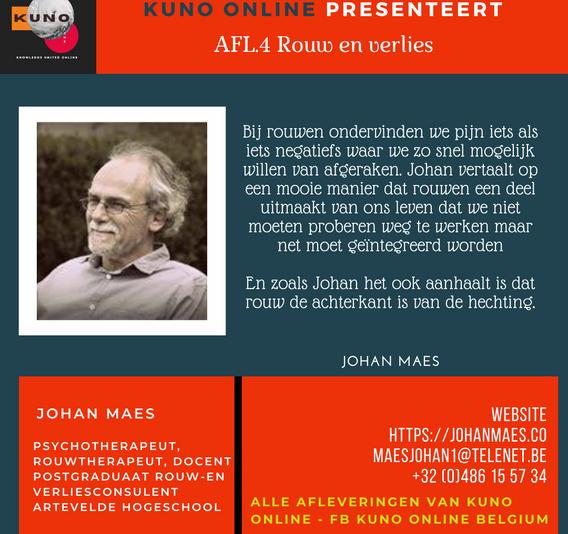 Johan Maes