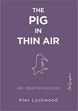pig in thin air.jpg