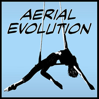 aerial evolution podcast logo with Jane Rose and Rowan Metzner