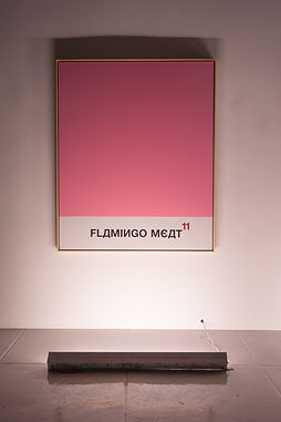 Double-Diamond-Sun-Body-Robbie-C-Williamson-Biig-view-MAMA-Gallery-Painting-Flamingo-Meat