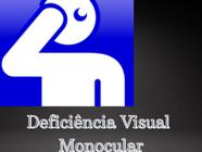 Visão Monocular e Aposentadoria por Deficiência