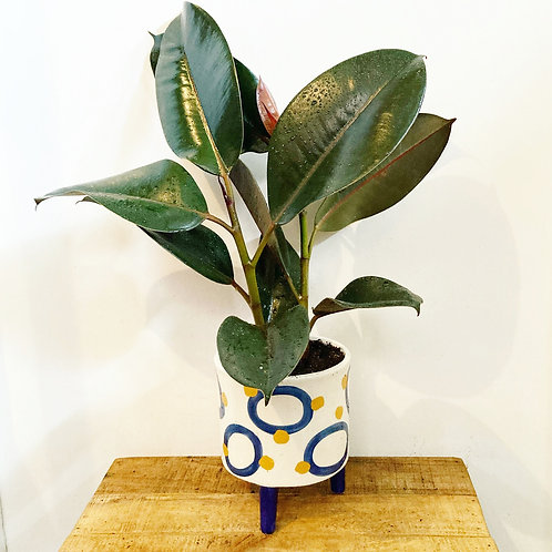 Ayla Footed Ceramic Planter