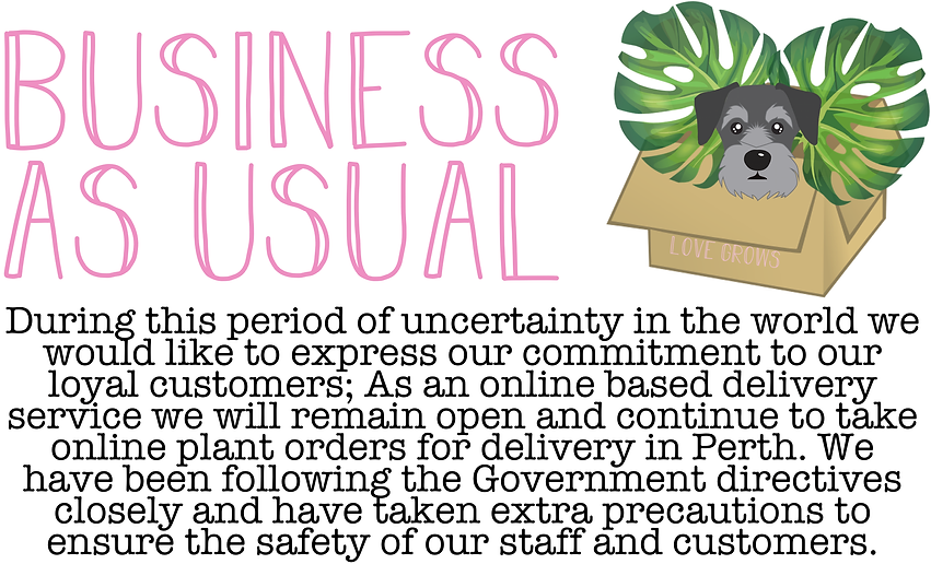 business as usual.png