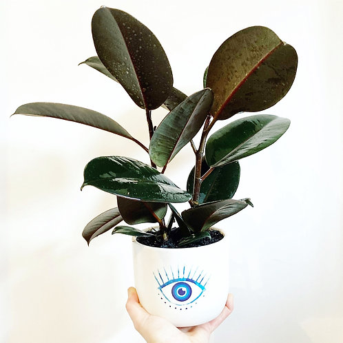 Agapi Blue Eye Ceramic Planter