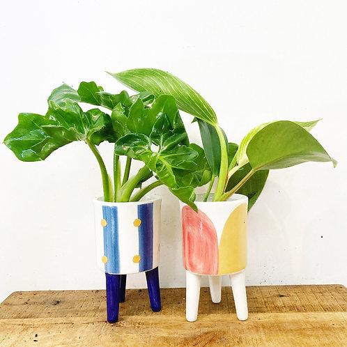 Alaia Footed Ceramic Planter