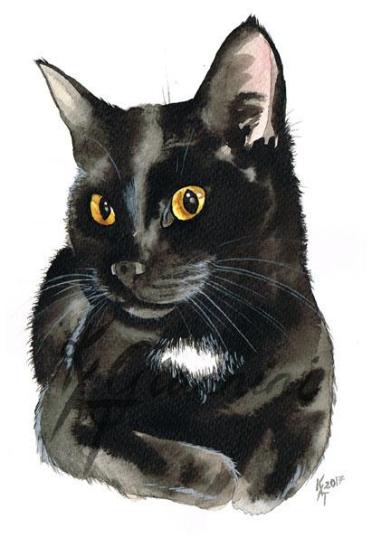 Cat 172dpi