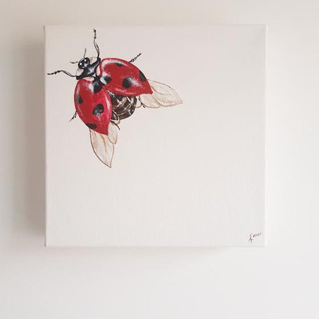 Cute Lady Bug Painting