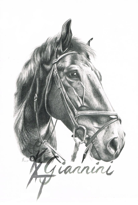 A3 Horse72dpi