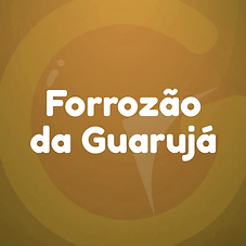 FORROZÃO.png