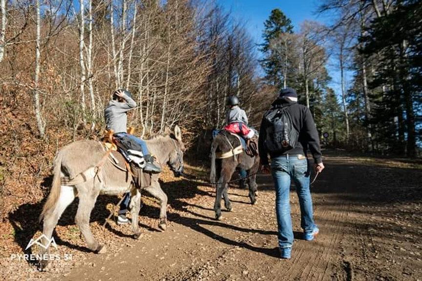 C'est parti pour la randonnée avec ânes à partir de 4 ans