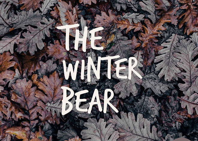 The Winter Bear.JPG