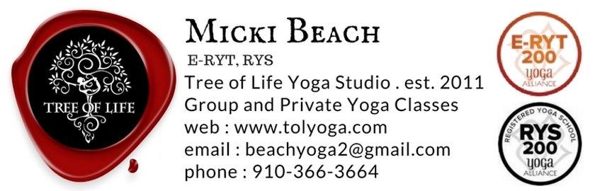 Micki Beach Header (2).jpg