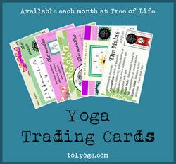 Trading Cards May 2018