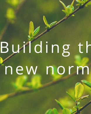 Leaves on a plant with the words 'Building the new normal'