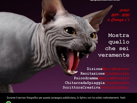 Corsi & Laboratori 2019 - 2020 ...