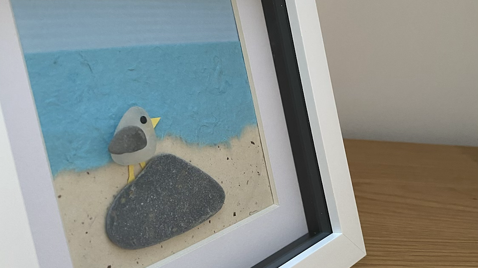 Steven Seagull on The Beach