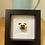 Thumbnail: Dog Rocks - Pug