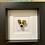 Thumbnail: Dog Rocks - Jack Russell