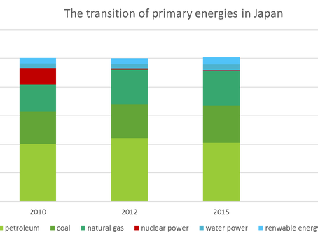 The Movement for Zero Emission Society and Japanese Company