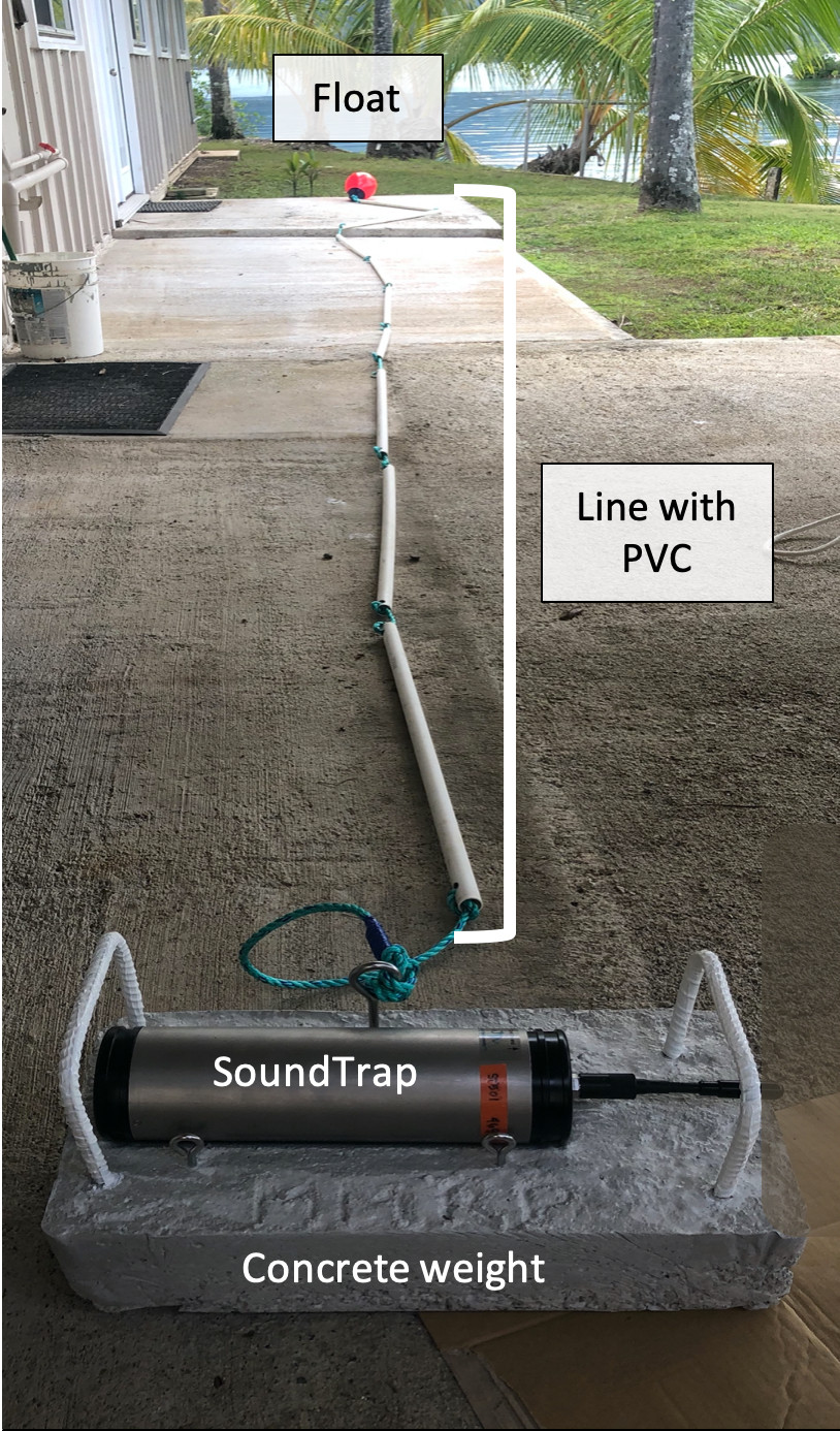 The SoundTrap underwater acoustic recorder and its concrete mount equipped with handles for carrying and lowering the unit, a line woven through PVC pipes, and a sub-surface float.
