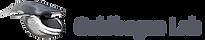 goldbogen-lab-logo.png