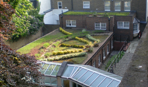 While a very cheap room, it had a pretty view of a sleepy London courtyard