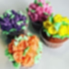 Cupcakes Jays Cakes Lausanne