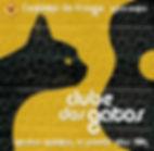 gato e violão pretos em fundo amarelo para representar a noite