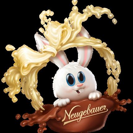 FOOD Illustrations - Neugebauer
