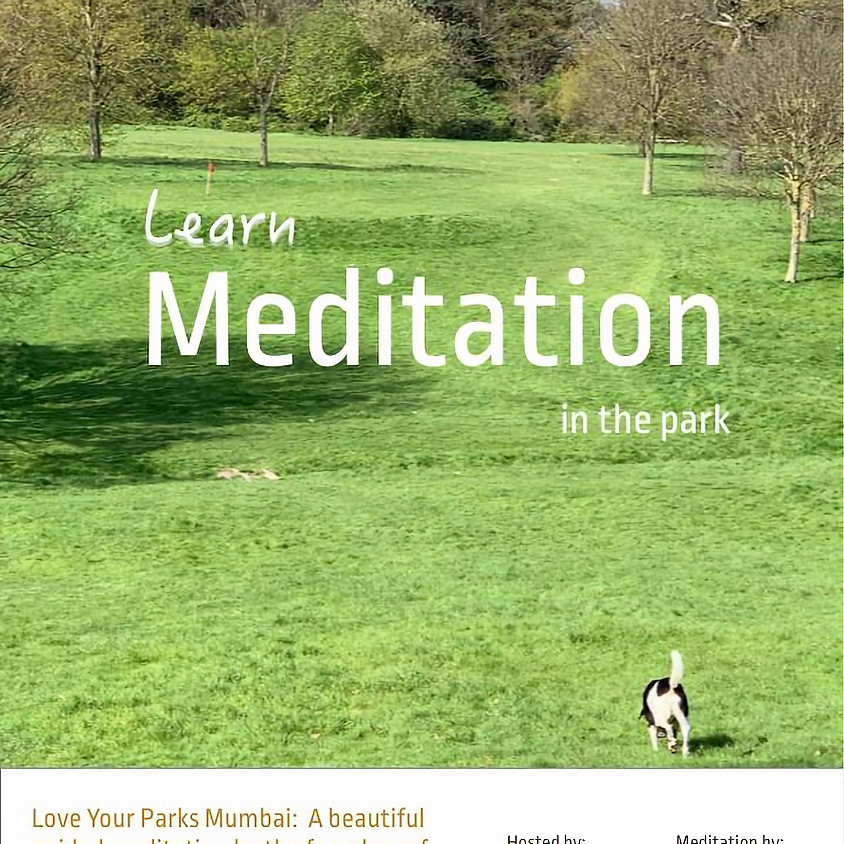 Learn Meditation in the Park