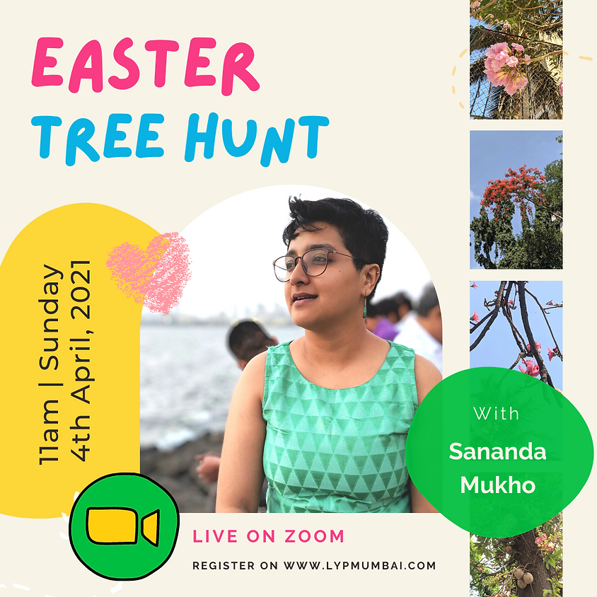 Easter Tree Hunt!