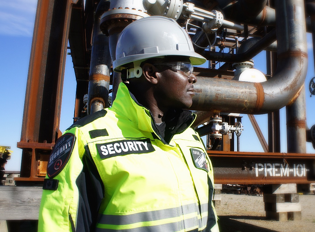 Energy Security Services