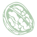 Nuts site_Prancheta 1.png