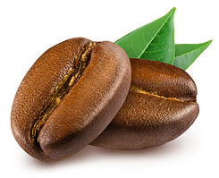 Two shiny fresh roasted coffee beans wit