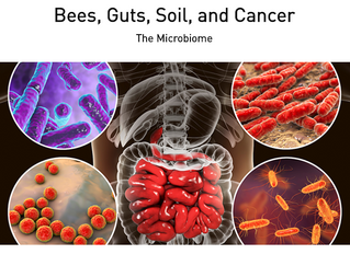 What do Bees, Guts, Soil, and Cancer have in common? The Microbiome!