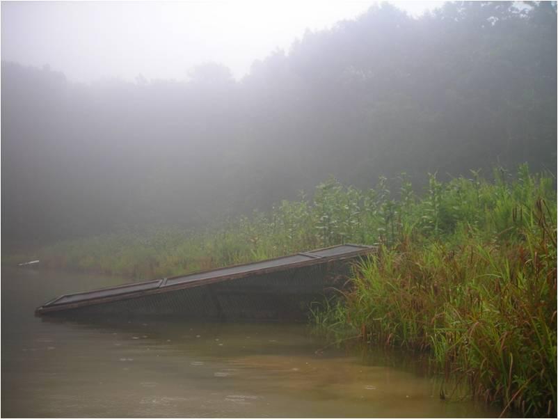 enclosure in fog summer 2010