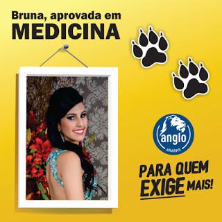 Bruna Malvestiti Vieira dos Santos