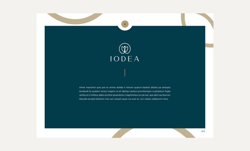 IODEA19.jpg