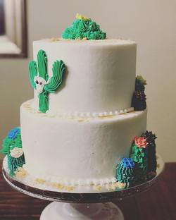 Cactus 🌵 Cake ._._._